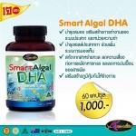 DHA Auswelllife อาหารเสริม บำรุงสมอง Smart Algal DHA 110.25 mg. 60 แคปซูล