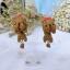 ต่างหู น้องหมา ยอร์คเชีย Yorkshire Terrier Earrings thumbnail 1
