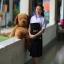 ( มาตราฐาน Muangdek ) เสื้อเชิ๊ตนักเรียนหญิง ม.ปลาย แขนพอง โรงเรียนรัฐบาล thumbnail 2