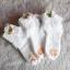 ถุงเท้าเด็กหญิง สีขาวระบายลูกไม้ ประดับดอกหลากสี สำหรับเด็ก 3 - 9 ปี thumbnail 1