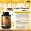 Auswelllife โปรพอลิส เสริมสร้างภูมิคุ้มกัน รักษาภูมิแพ้ Premium Propolis 1,000 mg. 60 แคปซูล thumbnail 1