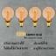 หลอดไฟเอดิสัน รุ่น G95-LED-CSC (หรี่ได้โดยไม่ต้องใช้ดิมเมอร์) แพค 4 หลอด thumbnail 1