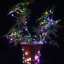 ไฟตกแต่ง String Light แบบ Starry - RGB thumbnail 2