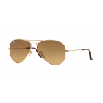 Ray Ban Aviator RB3025 001/M2 Crystal Polarized Brown Gradient