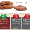 กระบวนการล้างพิษของหลินจือ (หลินจือมิน : www.linhzhiminthailand.com)