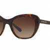 COACH 0HC8204F 512013 DARK TORTOISE Brown Gradient
