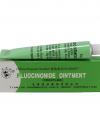ครีมยาแก้แพ้ 1หลอดเขียว ตรานกคู่ ของแท้ 10 กรัม FLUOCINONIDE OINTMENT (FROSTLIKE)