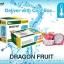 Organic Dragon Fruit thumbnail 1