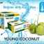 Organic Young Coconut thumbnail 1