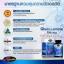 ขายAuswelllife Glucosamine 1500mg ออสเวลไลฟ์ กลูโคซามีน บำรุงกระดูกข้อ thumbnail 3