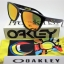 OAKLEY Valentino Rossi OO9013 24-325 (VR46) SIGNATURE SERIES FROGSKINS
