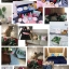 หมอนอิง (พร้อมไส้หมอน) ลายนกฟามิงโก้ thumbnail 3