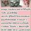 ฮอร์โมนอกอึ๋มสูตรยอดฮิตเม็ดสีชมพู แผงละ 6เม็ด thumbnail 3