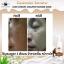 มาส์กมูสนมอูฐ CAMEL MILK AMAZING MOUSSE MASK thumbnail 10