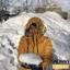 เสื้อกันหนาว SNOWVY : (สีส้มทอง) ทรงขนเป็ดเข้ารูป แขนยาวถึงมือ -15c เอาอยู่ thumbnail 18