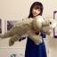 ตุ๊กตาจระเข้ สีเทา ขนาด 65 cm.