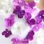 พร้อมเช่า ชุดแฟนซี ชุดราตรียาว ไหล่เฉียงแขนตุ๊กตา สีม่วง ขาว แต่งดอกไม้สามมิติ thumbnail 6