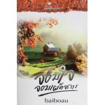 จอมใจจอมเผด็จการ(NC25+)/baiboau::หนังสือทำมือ ***แนะนำ (ลด 35%)