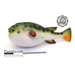 โมเดลปลาปักเป้า PUFFER Fish แบบยางอ่อนนุ่มนิ่ม ตั้งโชว์สวย ขนาดใหญ่ 14 นิ้ว