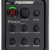 PSY301: Fishman presys blend+mic
