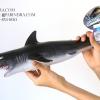 โมเดลปลาฉลาม Shark แบบยางอ่อนนุ่มนิ่ม ตั้งโชว์สวย ขนาดใหญ่ 19 นิ้ว