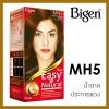 Bigen Easy N Natural บีเง็น อีซี่ส์ แอนด์ เนเชอรัล BG5 น้ำตาลทองแดงประกาย