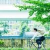 จักรยานไฮบริด FUJI BALLAD 2016