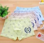 กางเกงในเด็ก คละสี แพ็ค 20 ตัว ไซส์ XXXL อายุ12-13 ปี