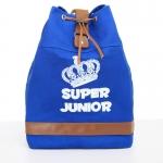 กระเป๋าเป้แบบผ้า SJ (2)