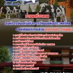 คู่มือเตรียมสอบช่างเครื่องกล องค์การส่งเสริมกิจการโคนมแห่งประเทศไทย