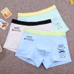 กางเกงในเด็ก คละสี แพ็ค 20 ตัว ไซส์ XXXL