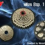 สเตอร์เฟือง DP+ 8 sp. 11-42t นน. 490 g