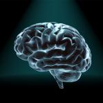 สารอาหารที่ร่างกายไม่ต้องการ แต่สมองต้องการ คือ...คอเลสเตอรอล!!!