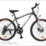 จักรยานเสือภูเขา WINN รุ่น Matrix เฟรมอลูมิเนียม 21 สปีด 2015