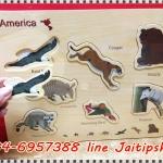 จิ๊กซอไม้ ชุดสัตว์อเมริกา