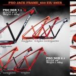 เฟรมจักรยาน XDS PRO DGB 9.1 เฟรมเสือภูเขาล้อ 29er องศาแข่งขัน 2017 (Pro Jack Frame)