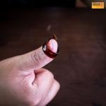 ปิ๊กนิ้วโป้ง Thumb Picks D'Addario Planetwave 5CSH4-5