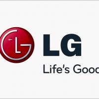 ถุงกรอง LG