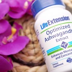 # เหนื่อยล้า # Life Extension, Optimized Ashwagandha Extract, 60 Veggie Caps