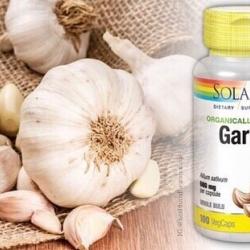 Solaray, Organically Grown Garlic, 600 mg, 100 VegCaps