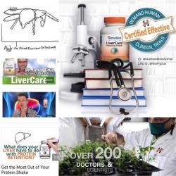 Himalaya Herbal Healthcare, Liver Care, 180 Veggie Caps