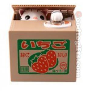 แมวกล่องสตรอเบอร์รี่