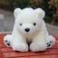 ตุ๊กตาหมีขาวนั่ง Amangs (ขนาด 28 cm.) thumbnail 2