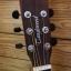 Tanglewood DBT D BW Fishman 301 thumbnail 3