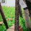Amari AM-419C EQ Gtone GT3 thumbnail 6