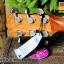 Veelah V3-DCE with Hardcase thumbnail 14