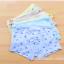 กางเกงในเด็ก คละสี แพ็ค 20 ตัว ไซส์ L อายุ 3-5 ปี thumbnail 1