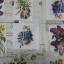 กระดาษแนปกิ้น 13x13 thumbnail 5