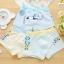 กางเกงในเด็ก คละสี แพ็ค 20 ตัว ไซส์ M อายุ2-3 ปี thumbnail 2