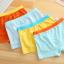 กางเกงในเด็ก คละสี (1 ถุง มี 3 ตัว แพ็ค 8 รวม 24ตัว) ไซส์ L อายุ 4-5 ปี thumbnail 8
